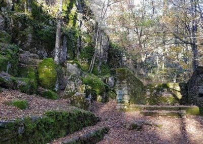 Monte Abantos + Baño de bosque