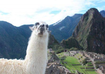Perú te «llama»